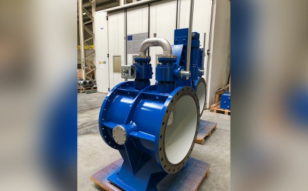 Butterfly valve with integrated by-pass ball valves