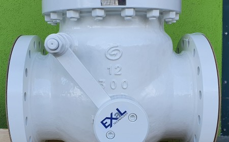 "Check Valve 12"" class 300# with lever"
